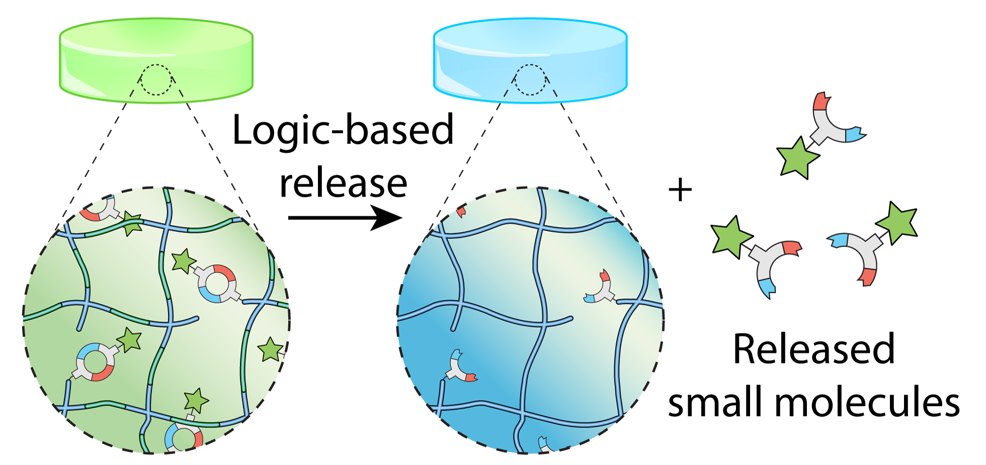 Logical Stimuli-Triggered Delivery of Small Molecules from Hydrogel Biomaterials